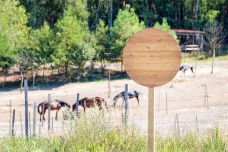 Empty wooden signboard on the horse farm. Horse trail sign post or beware sign. Horses eating hay on ranch. Ridding school or horse club banner Stock fotó