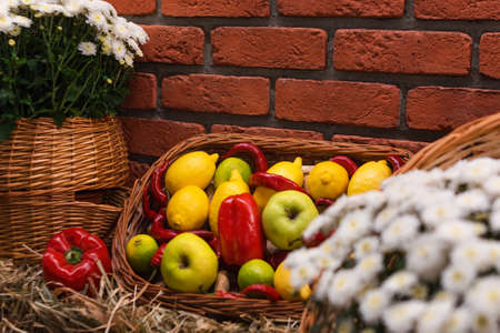 Autumn decor with vegetables and flowers on dry haystacks. Harvest and garden outdoor decorations for Halloween, Thanksgiving, autumn season still life. Fall styled composition 版權商用圖片