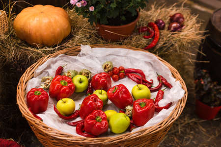 Autumn decor with natural straw bale, pumpkin, apples, peppers and old wooden barrels. Harvest and garden outdoor decorations for Halloween, Thanksgiving, autumn season still life. Fall composition