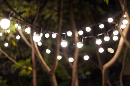 Blurred background, backyard illumination, light in the evening garden, electric lanterns with round diffuser. Lamp garland of light bulbs on a tree branch among the leaves, illuminate night scene 版權商用圖片