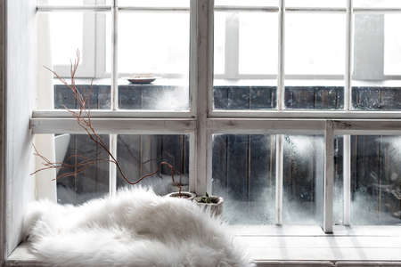 Cozy winter still life. Plants in pots and warm fur on vintage windowsill. Winter season, spending winter time at cozy home concept.