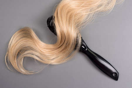 Hairdresser professional hairbrush with curl of blonde hair on gray background. Healthy long blond hair lock, haircut, hairstyle. Dyed hair or coloring, hair extension, cure, treatment concept. Imagens