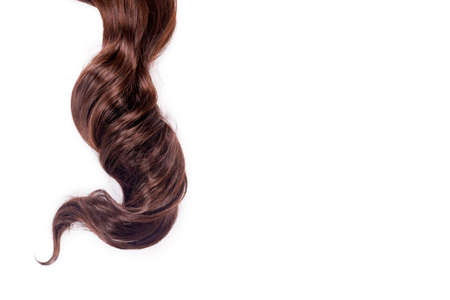 Curly brown hair isolated on white background. Beautiful healthy long chocolate brown hair lock, haircut, hairstyle. Dyed hair or coloring, hair extension, cure, treatment concept.