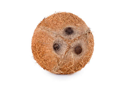 Whole coconut isolated on white background. De-husked coconut fruit showing the characteristic three pores