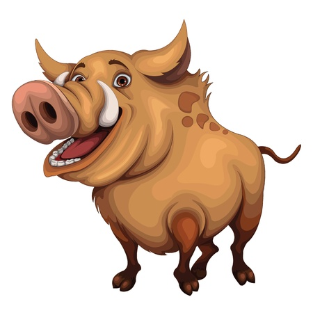 wild hog: Boar vector Illustration