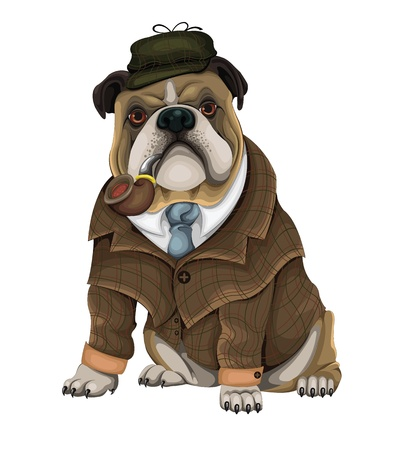 bulldog: Bulldog Sherlock vector