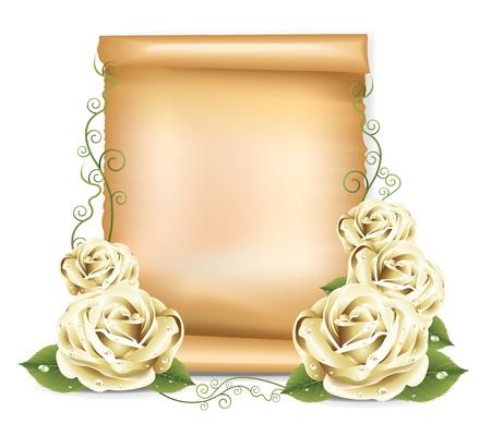 entwurf: Weiße Rosen Papier Illustration