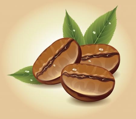 Koffiebonen Vector Illustratie