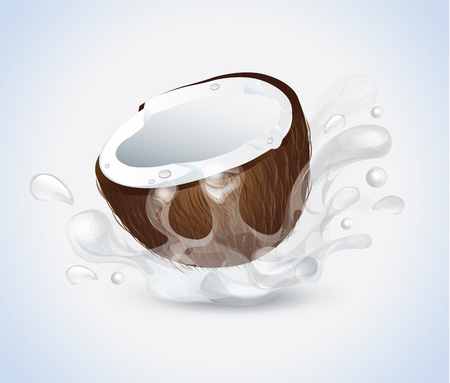 Coconut Splash  Vector