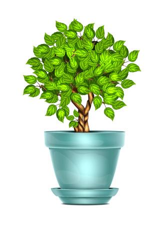 planter: Flower