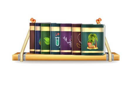 Wooden Shelf with Book Vector