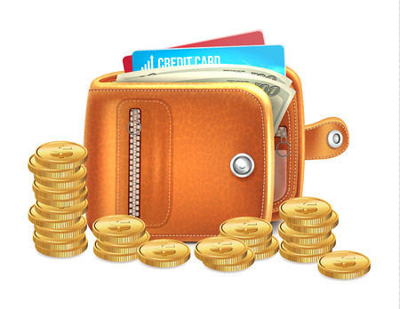 wage: Wallet with Gold Coins