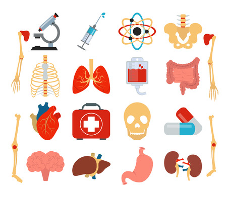 Stock vector medicine anatomy flat icon set Vector