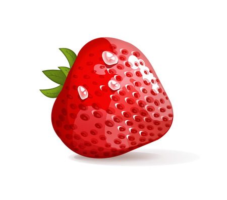 Strawberries vector illustration Vector