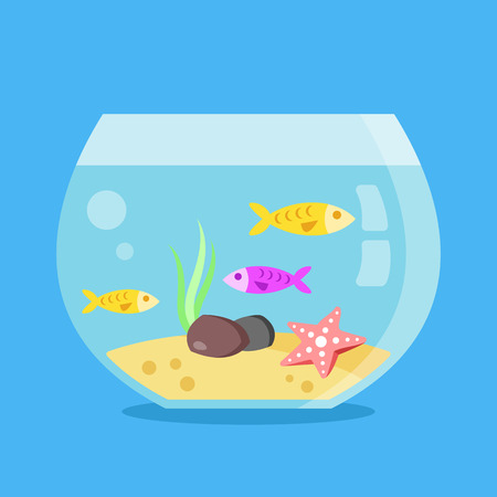 fish tank: Aquarium with fish, seaweed, starfish, sand and stones. Minimal design round fish tank isolated on blue background. Flat vector illustration