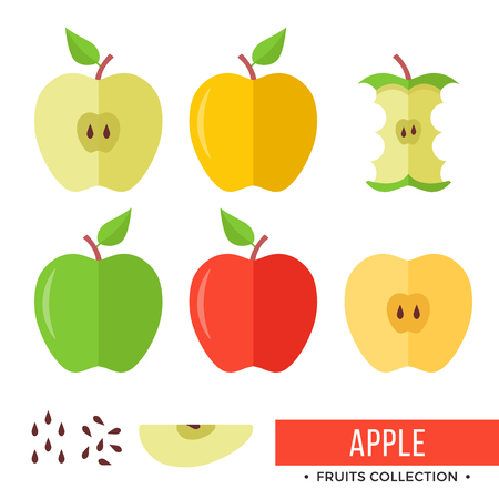 Apple. Yellow, green, red whole apples and parts, slices, seeds, leaves, core. Set of fruits. Flat design graphic elements. Vector illustration.