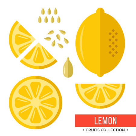 Whole yellow lemon and parts, slices, seeds. Set of fruits. Flat design graphic elements. Vector illustration.