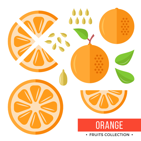 Whole orange and parts, slices, seeds, leaves. Set of fruits. Flat design graphic elements. Vector illustration.