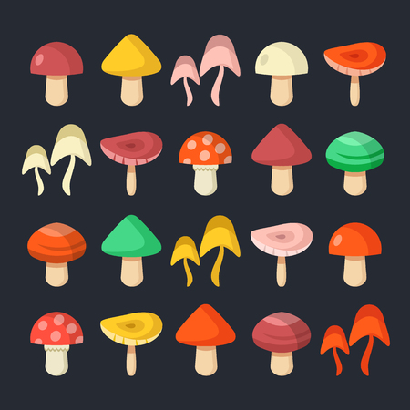 Mushrooms set. Colorful mushrooms collection. Modern graphic elements. Flat design style. Vector illustration