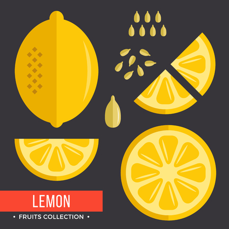 Lemon set. Yellow lemon. Modern flat icons. Vector illustration 向量圖像