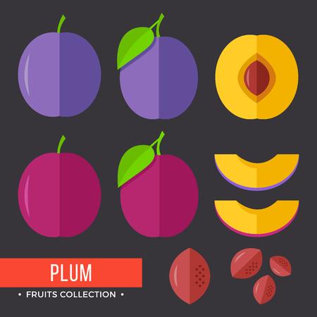 Plum. Modern flat icons. Vector illustration