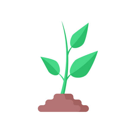 Sprout icon. Flat design. Green plant isolated on white background. Vector illustration