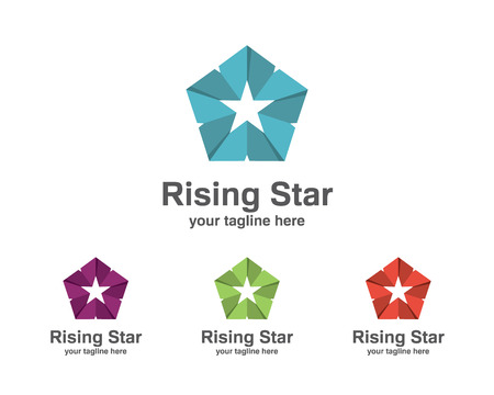 accounting logo: Abstract star business identity template. Star vector  design branding corporate identity. Simple modern star vector .