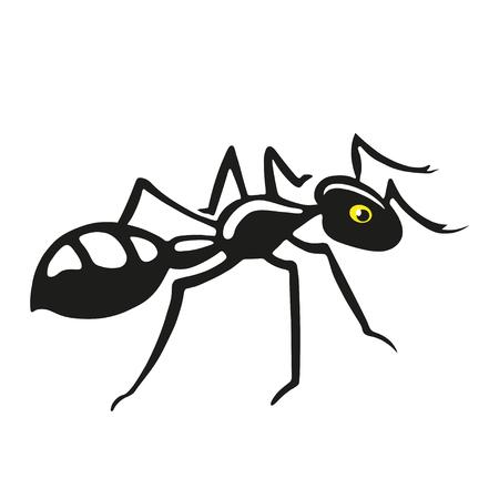 ants: Black ant. Graphic image.