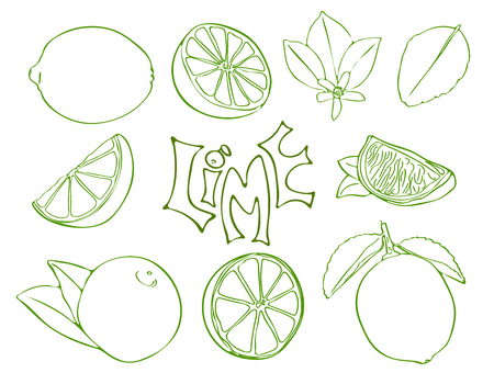 Set of lime vector symbols in sketch style
