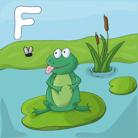 Green frog on a lake. Childrens cartoon illustrated alphabet image for learning. Letter F . ABC