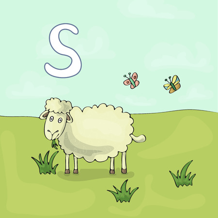 Illustrated alphabet letter S and Sheep. ABC book image vector cartoon. Sheep is grazed on a meadow. Children illustrated alphabet character.