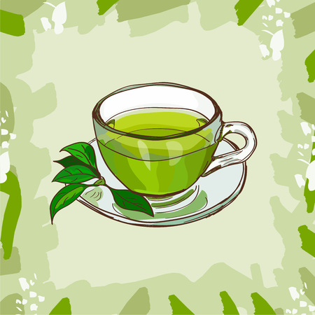 Glass cup with classic green tea with tea-tree leaves on abstract background. Hot drink hand drawn vector illustration set. Menu design item of sketch bar drink glass.
