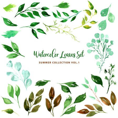 Set of Green leaves, herbs and branches. Big watercolor illustration collection. Botanical clipart. Floral Design elements. For wedding invitations, greeting cards, banners, textile and fashion print