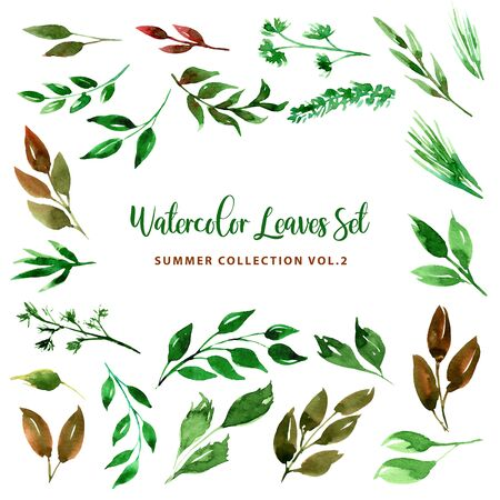 Set of Green leaves, herbs and branches. Big watercolor illustration collection. Botanical clipart. Floral Design elements. For wedding invitations, greeting cards, banners, textile and fashion print.