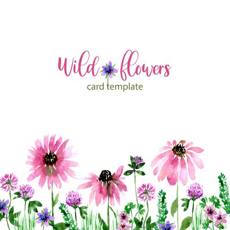 Watercolor loose style echinacea, stork and clover flower and green leaves card. Modern trendy template for invitation, wedding, banner, greeting card design. Poster print with wild florals