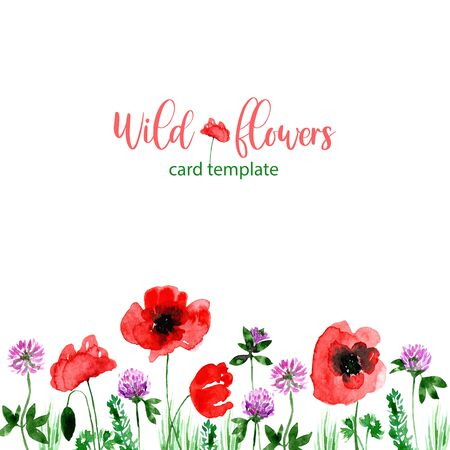 Watercolor loose style poppy and clover flower and green leaves card. Modern trendy template for invitation, wedding, banner, greeting card design. Poster print with wild florals. 版權商用圖片