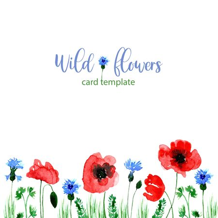 Watercolor loose style poppy, cornflower flower and green leaves card. Modern trendy template for invitation, wedding, banner, greeting card design. Poster print with wild florals.