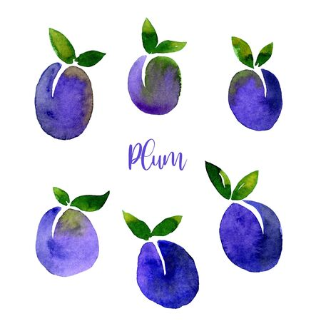 Plum blue violet watercolor set images. Bright hand painted berries isolated on white background. Collection in modern trendy style for card, poster, banner, print textile, fashion, wallpaper