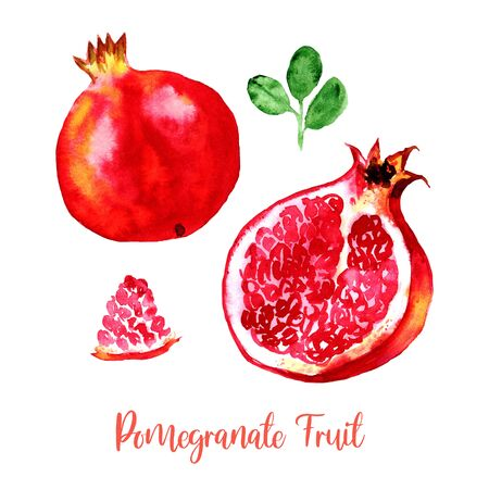 Pomegranate fruit red pink watercolor set images. Bright hand painted ripe isolated on white background. Collection in modern trendy style for card, poster, banner, print textile, fashion, wallpaper