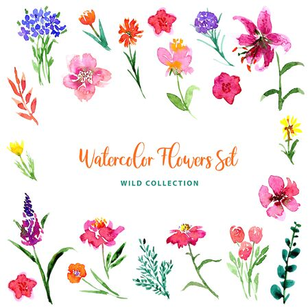 Wild watercolor little gentle flowers and leaves collection. Loose style floral set. Isolated images of pink, red, blue, yellow, orange. For print, pattern, textile, wallpapers, invitations, cards 版權商用圖片