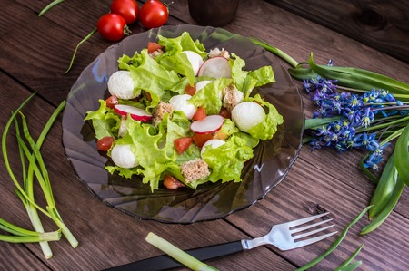 circassian: Salad of lettuce, radishes, crackers, tomato and cheese on a transparent dark Circassian plate