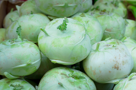 cultivating: Kohlrabi for sale on market. Agriculture background. Close-up. Top view