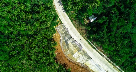 Aerial view of palms forest, road and mountain on the Siargao island. Philippines. Imagens