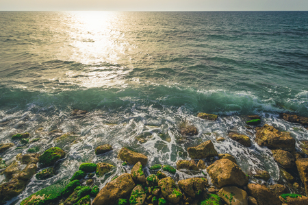 Coast in the Mediterranean Sea, Tel Aviv, Israel Фото со стока