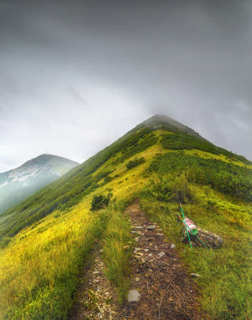 Mountain landscape with trail and green meadow and forest, Velyka Syvulya mountain, Karpaty, Ukraine Фото со стока