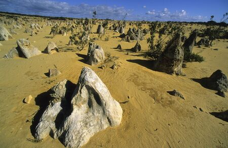 Pinnacles Desert. Nambung National Park. Western Australia