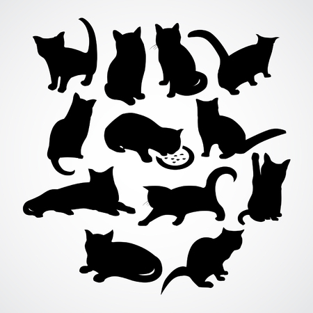 cute cats and kittens silhouettes