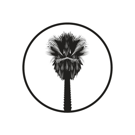 californian palm tree silhouette within a circle, illustration design, isolated on white background.