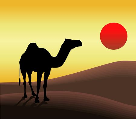 Silhouette Illustration of Camel and Sun ! Stock Photo