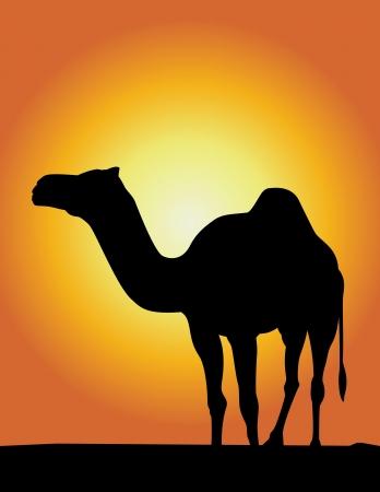 Silhouette Illustration of Camel ! Stock Illustration - 760597